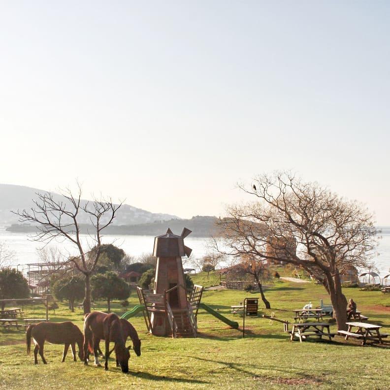 istanbul adalar gezilecek yerler değirmenburnu piknik alanı