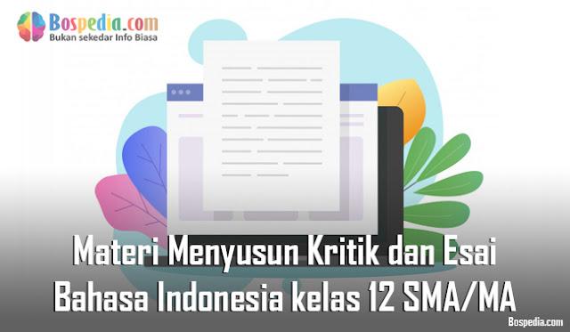 Materi Menyusun Kritik dan Esai Mapel Bahasa Indonesia kelas 12 SMA/MA