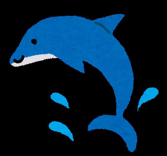 暑中お見舞いのイラスト イルカ かわいいフリー素材集 いらすとや