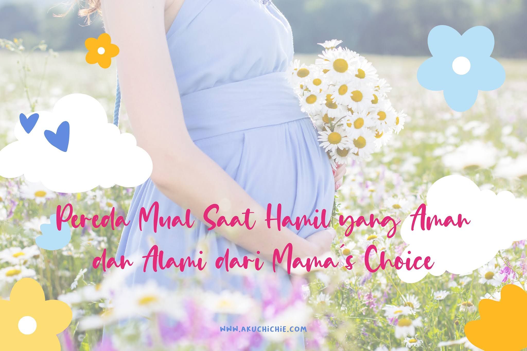 Mama's Choice Pregnancy Supplement