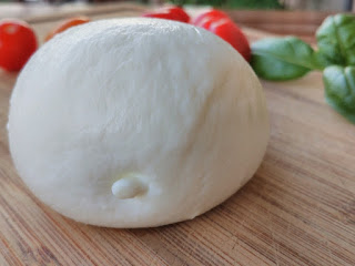 Buffalo mozzarella by Popo le Chien