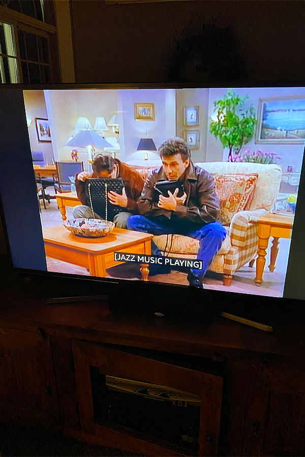 Mad About You Loveseat on tv
