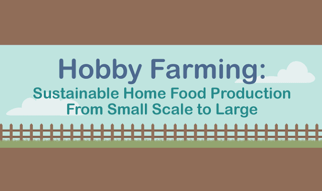 Hobby Farming Sustainable Home Food Production From Small Scale to Large