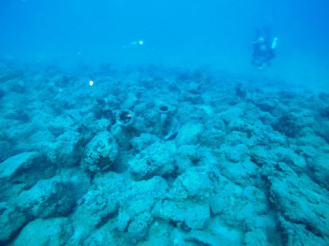 Underwater find off Lebanon coast points to fleet of ancient Greek ships