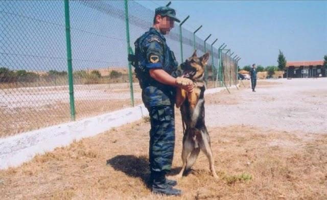 «Kατάταξη» 23 στρατιωτικών σκύλων στην ΠΑ (ΑΠΟΦΑΣΗ)
