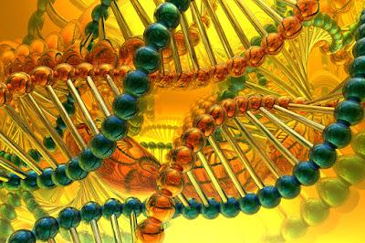 DNA helix strands