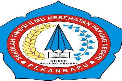 Lowongan Kerja Pekanbaru : Sekolah Tinggi Ilmu Kesehatan (STIKES) Payung Negeri Februari 2017