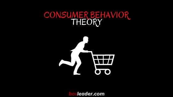 Understanding Consumer Behavior Theory