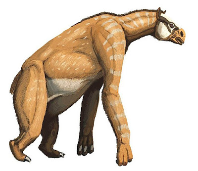 Amazing facts and Information bout Chalicotherium | Chalicotherium के बारे में अद्बुत तथ्य
