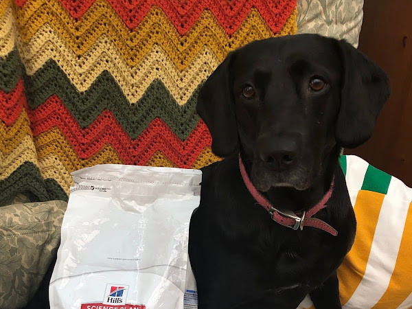 Review of Hill's Science Plan Dog food.