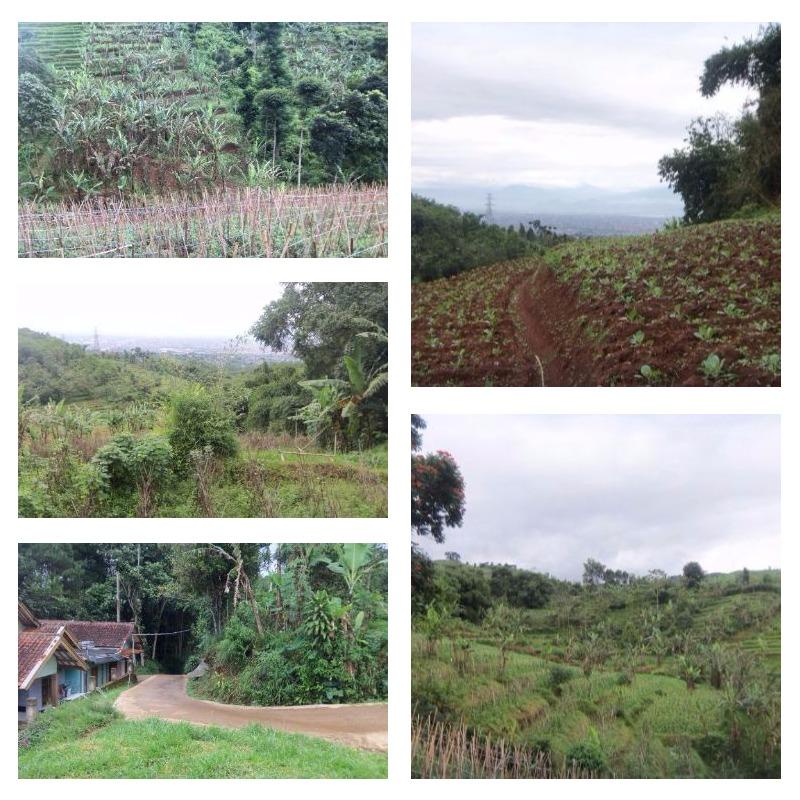 Dijual : tanah AJB di Cimenyan Bandung ~ Wifi Properti ...