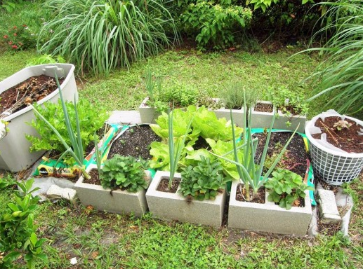 Best Soil For A Vegetable Garden Raised Bed