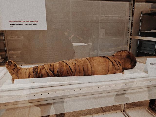 mummies museum philadelphia