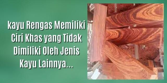 kayu rengas