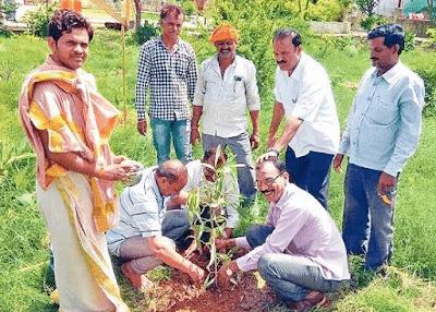 Social Responsibility of Management of Tree Plantation 1