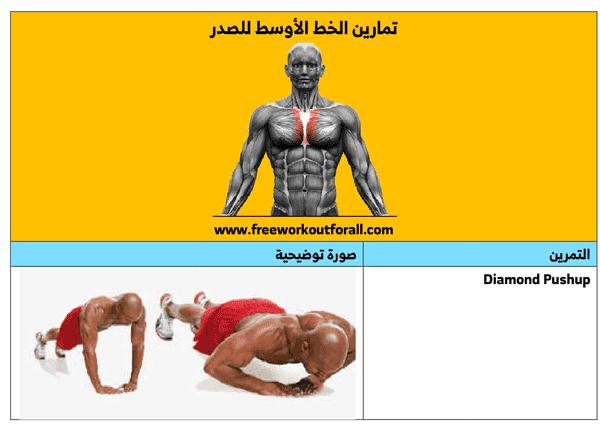 تمارين لابراز الخط الأوسط للصدر