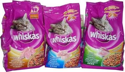 5 Makanan Kucing Anggora Bikin Bulu Lebat Dijamin Mudah Didapat