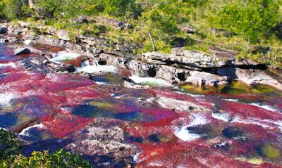 Lugares mágicos que debes VISITAR si viajas a COLOMBIA