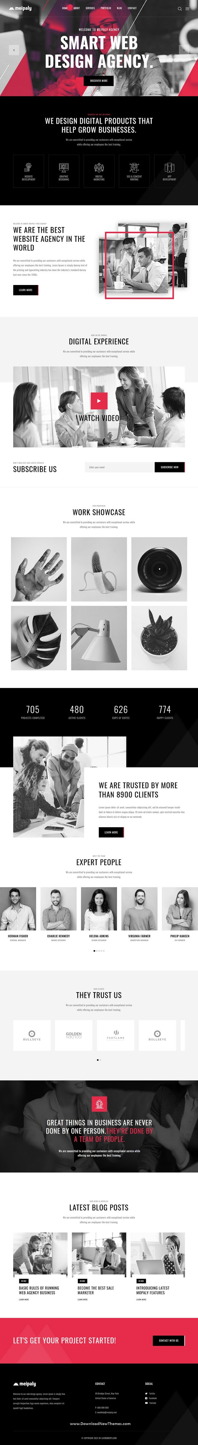 Digital Services Agency Website Template
