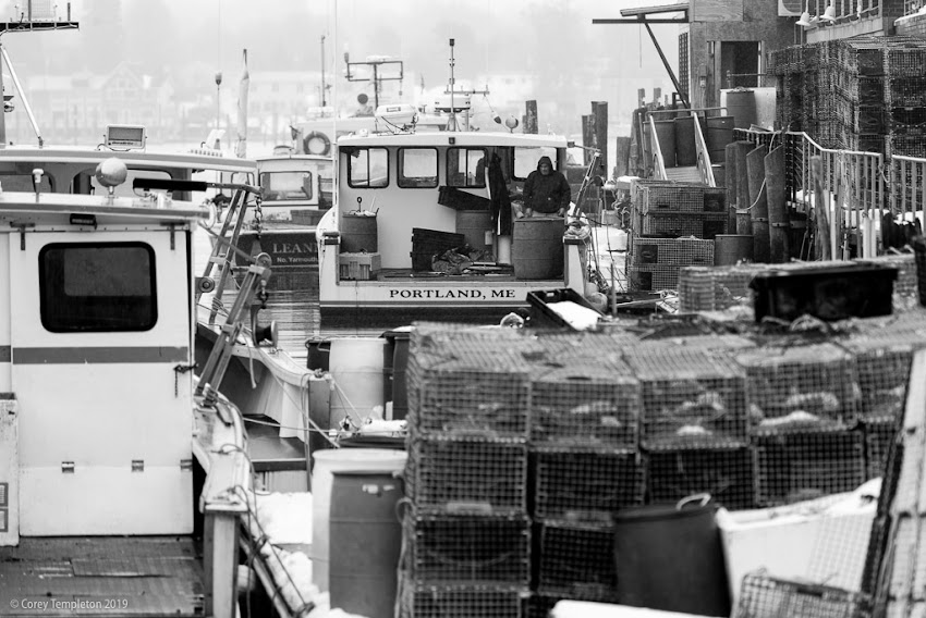 The boats and lobster traps at Custom House Wharf.