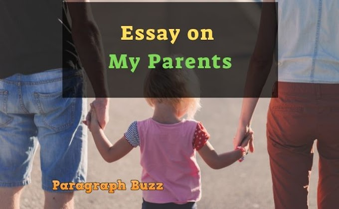 Essay on My Parents: 100, 200, 300, 400, 500 Words