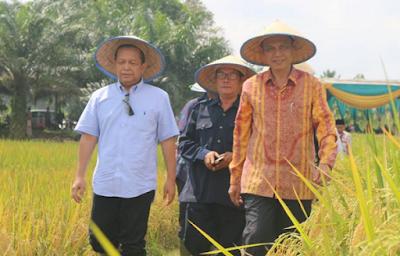 Panen Raya Padi Organik, Lampung Dukung Kedaulatan Pangan Nasional
