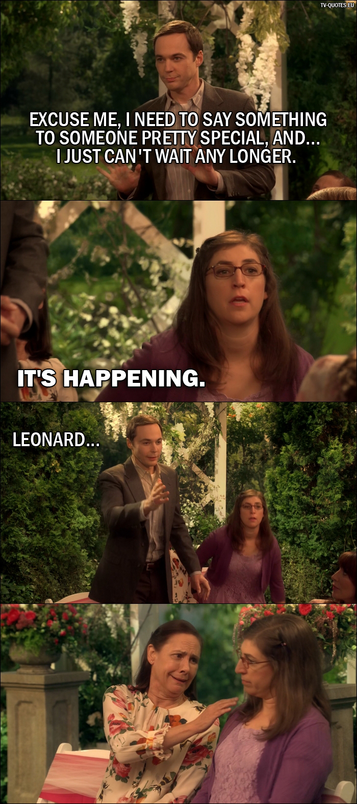 18 Best The Big Bang Theory Quotes from The Conjugal Conjecture (10x01) - Sheldon Cooper: Excuse me, I need to say something to someone pretty special, and... I just can't wait any longer. Amy Farrah Fowler: It's happening. Sheldon Cooper: Leonard...