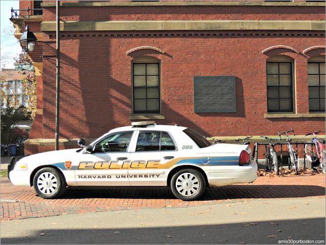 """Coche de Policía """"aparcado"""" en el Harvard Yard"""