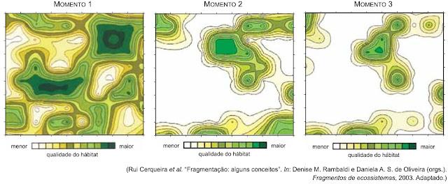 As figuras mostram, em três momentos distintos, a distribuição da qualidade do hábitat em uma região