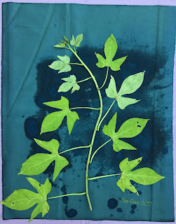 Wet Cyanotype_Sue Reno_Image 53