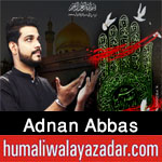 https://aliwalayazadar.blogspot.com/2020/08/adnan-abbas-nohay-2021.html