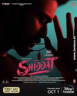Shiddat: Journey Beyond Love Poster 4