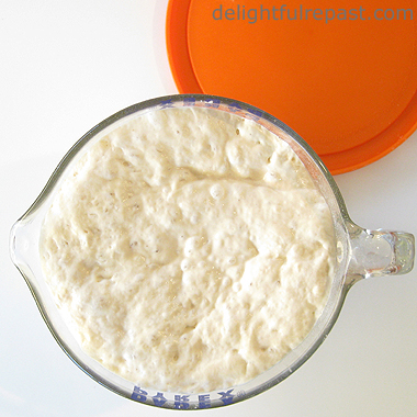 Sourdough Simplified - A Tutorial (this photo, first rise in 2-quart Pyrex measure) / www.delightfulrepast.com