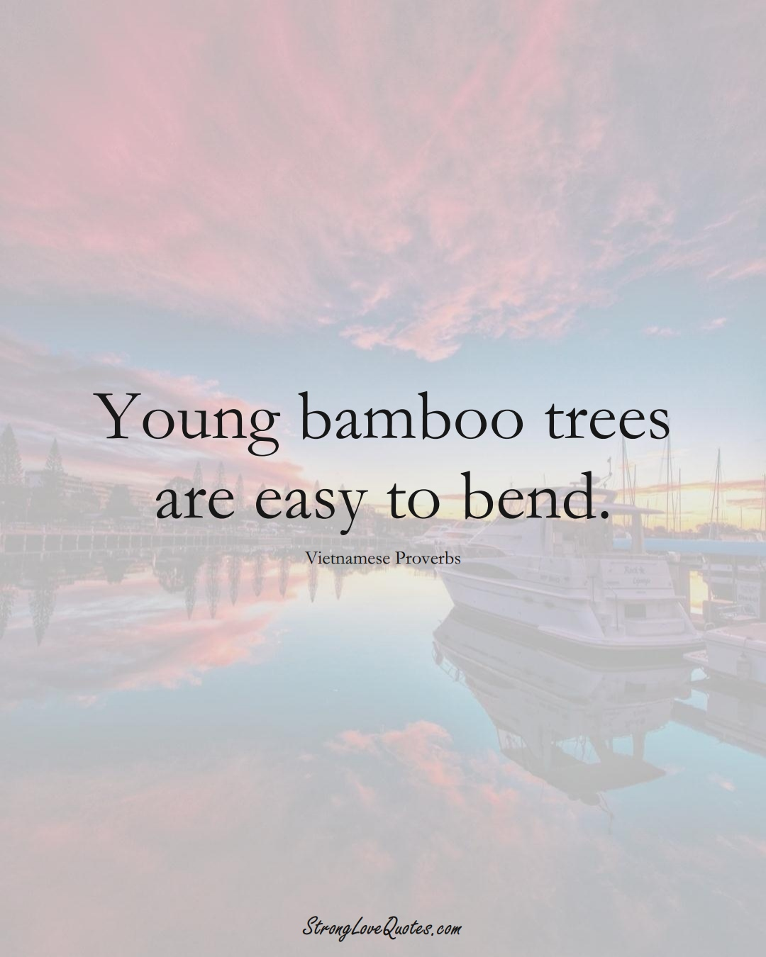 Young bamboo trees are easy to bend. (Vietnamese Sayings);  #AsianSayings