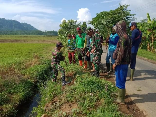 Pemerintah-TNI dan Masyarakat Tanam Bibit Pohon di Sekitar Jalan Desa Tempurejo