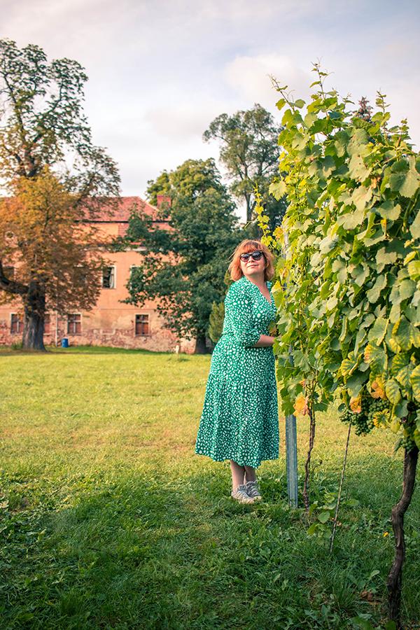 Magiczne polskie winnice - Winnice Jaworek