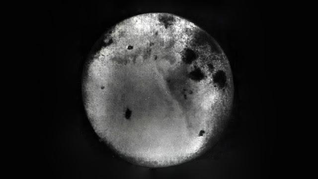 Publican las primeras fotos de la cara oculta de la Luna sacadas hace 60 años
