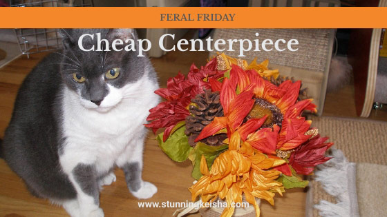 Feral Friday: Cheap Centerpiece