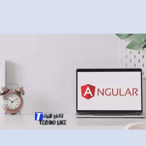 أهم 5 أسباب لاختيار تطوير الويب AngularJS