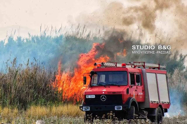 Πυροσβεστικά οχήματα στην Αμυγδαλίτσα Αργολίδας για πυρκαγιά