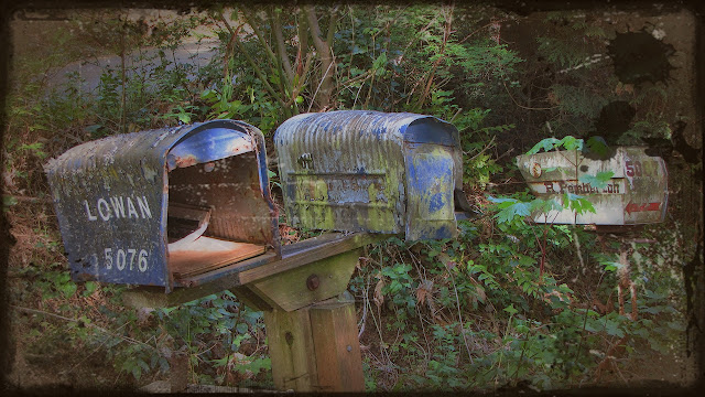 Battered mailboxes on a rural road in Saanich...