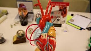 Teknologi Terbaru Pengobatan Penyakit Jantung