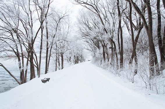 ¿Sabes donde esta la ciudad mas fria del mundo? En Siberia