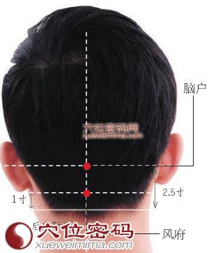 腦戶穴位 | 腦戶穴痛位置 - 穴道按摩經絡圖解 | Source:xueweitu.iiyun.com