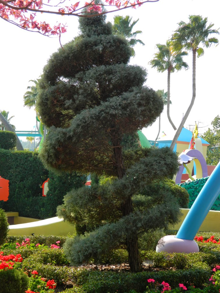 Spiral juniper topiary Seuss Landing Universal Studios Orlando by garden muses-not another Toronto garden blog