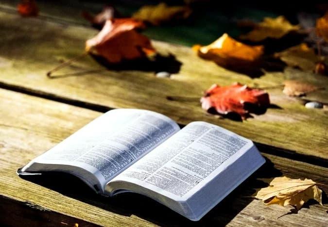 A imagem mostra uma bíblia aberta sobre uma mesa com folhas de arvores espalhadas.