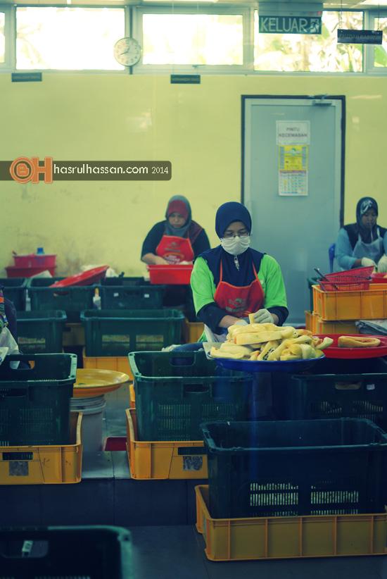 Pekera di kalangan surirumah dan ibu tunggal di kilang jeruk madu pak ali