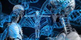 """""""蛋白質的折疊"""",這生物圈最大謎團,已被人工智慧破解了?(下)"""