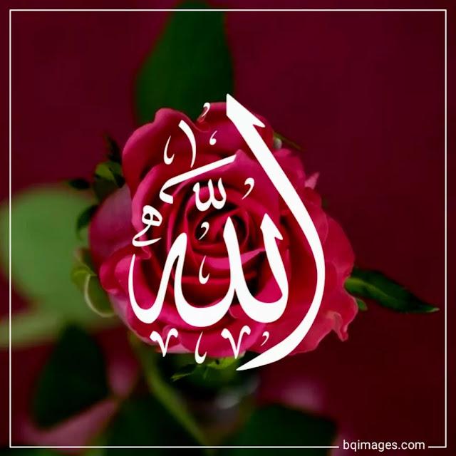 islamic profile pic for whatsapp