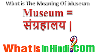 What is the meaning of Museum in Hindi